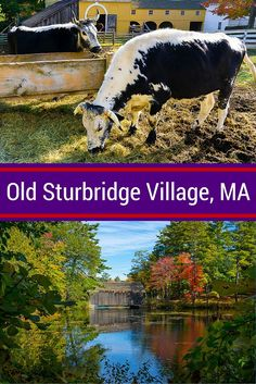 Go back in town by visiting Old Sturbridge Village in Central Massachusetts, just an hour from Boston, MA! Beautiful nature meets with history for a great travel day activity with kids and the whole family.: