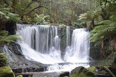 Hobart, Tasmania, Australia Tasmania Hobart, John Muir, Natural World, Things To Do, Waterfall, Australia, Places, Nature, Outdoor
