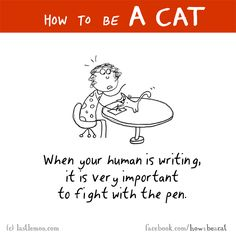 Cats: HOW TO BE A CAT: When your human is writing, it is very important to fight with the pen.
