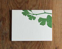 US $5.00 letterpress card ginkgo in green w coordinating envelope