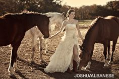 I will be taking so many trash the dress photoshoots after my wedding with horses!