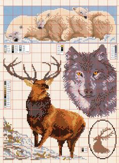 great elk and wolf patterns