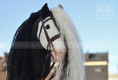 Hobby Horse, Horse Tack, Training, Horses, Board, Animals, Hairdos, Little Gifts, Funny Animal Humor
