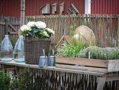 Välkomna till Lilla grönas orangeri o trädgård idag! Kom o strosa i en nyvaken trädgård, ta en fika i orangeriet o inspireras av ting o växter i butiken!  Öppet lör o sön  kl 10-16 adressen är Moarna 24a 43276 Tvååker. Entré 100kr ( barn gratis) vi bjuder på fika. @lillagrona_viktoria @hakesgard