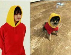 Tae and Yeontan❤️ Foto Bts, Bts Photo, Taekook, Bts Memes, Bts Dogs, J Hope Smile, Frases Bts, I Love Bts, About Bts