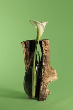 Designer Creates Nature-Inspired Glassblowing Molds Using Tree Trunks, German designer Marco Merkel