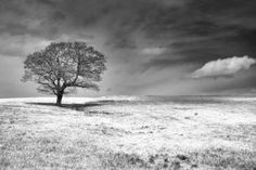 """Saatchi Art Artist Andrew Bret Wallis; Photography, """"Between Earth and Sky (Ltd Edition of only 20 Fine Art Giclee Prints from an original photograph)"""" #art"""