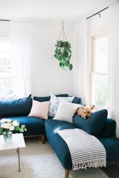 Contemporary living room design with navy mid-century sectional, hanging plants and marble coffee table. After: Austin home tour by branding and web designer for lifestyle brands