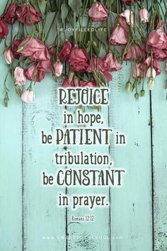 Romans 12:12  https://www.etsy.com/shop/SowingAcorns?ref=shop_sugg  Silk scarves - hand dyed scarves - tie dyed scarves – Christmas scarf – unique scarf - cotton scarves – gameday scarves - womens accessories - handmade in USA - leather purses - quilted tote bags -  purses – totes - handbags
