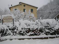 Tacchino Wines under the snow. Castelletto d'Orba - Italy www.tacchinovino.net