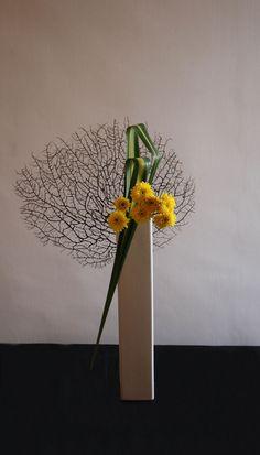 Ikebana Sogetsu (realizzato da Luca Ramacciotti) | por LucaRam (contattami su ipernity)