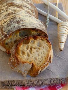 pane casalingo con lievito madre