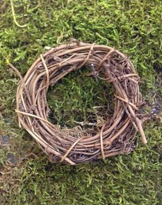 Small vine, may be used in fairy garden, to adorn trellis or arbor, also used for any miniature, dollhouse, wreath  $4.95 USD...