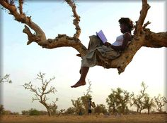 African woman reading in a tree. Photo from the book 'Africa,' 2006 © Oliver Föllmi I Love Books, Good Books, Books To Read, My Books, Portraits, Woman Reading, Thomas Jefferson, Book Lovers, Book Worms