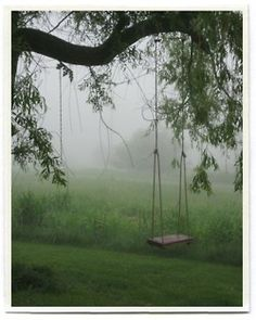 reminds me of the willow tree swing at my parent's home.  It was great being a kid!