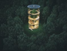 Tubular Glass Tree House http://www.architecturendesign.net/stunning-tubular-glass-house-built-around-tree/