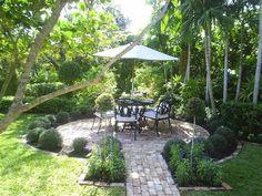patio, shrubs, salvia