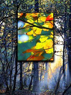 'Light in the Leaves' von Dirk h. Wendt bei artflakes.com als Poster oder Kunstdruck $18.03