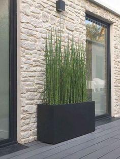 Small Backyard Landscaping, Modern Landscaping, Landscaping Ideas, Small Patio, Modern Front Yard, Modern Landscape Design, House Landscape, Landscape Plans, Modern Design
