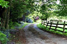 Country, back roads, cork, ireland