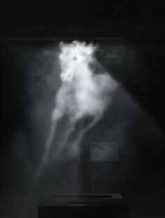 Banks Viollette: galloping horse projection on vapor