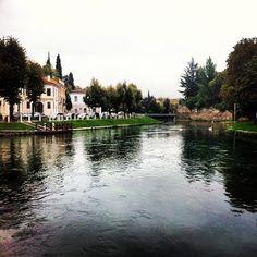 Treviso in Treviso, Veneto