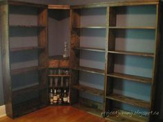 Bookshelf wall unit. << I like how the bottom shelf has a back board at the bottom, to help keep things from falling off behind the shelf. I'd probably put one on the back of every shelf.