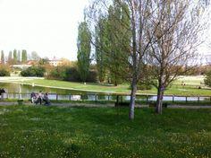"""Forlì, Parco Urbano """"Franco Agosto"""", superficie di oltre 20 ettari."""