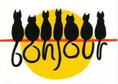 Buenos días... gatos!