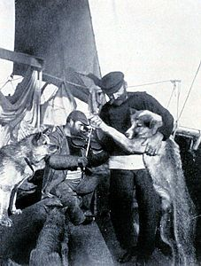 Pictures for the South Pole Expedition - 1911 - Roald Amundsen