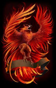 Ideas For Phoenix Bird Firebird Dragon Tattoo Dragon And Phoenix, Phoenix Bird Tattoos, Phoenix Tattoo Design, Phoenix Design, Phoenix Artwork, Phoenix Images, Phoenix Wallpaper, Mythological Creatures, Mythical Creatures