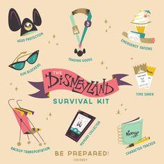Disneyland survival kit