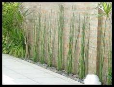 Resultado de imagen para decoracion jardines pequeños