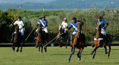 Argentario Polo Club in Tuscany - polo by the sea and the Mediterranean vegetation