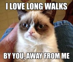 I love long walks. By you, away from me