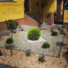 Vidéki kert ötletek Sidewalk, Modern, Plants, Design, Trendy Tree, Side Walkway, Walkway, Plant