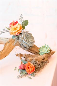 succulents roses and seeded eucalyptus accents on drift wood