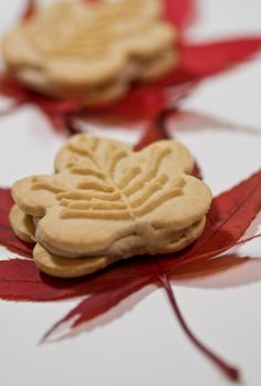 bushcraftdalex: ça c'est bon ! The Best of. Maple Leaf Cookies, Caramel, Autumn Tea, Autumn Harvest, Harvest Time, Maple Cream, Red Cottage, Cookies And Cream, C'est Bon