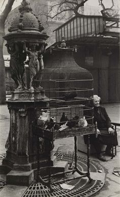 Paris Bird Market (in the by Rosalie Gwathmey 1908 - 2001 gelatin silver print (Smithsonian) Black White Photos, Black And White Photography, Old Pictures, Old Photos, Vintage Photographs, Vintage Photos, Street Photography, Art Photography, Vintage Paris