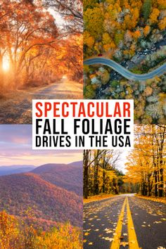 Spectacular Fall Drives In The USA To See Fall Foliage
