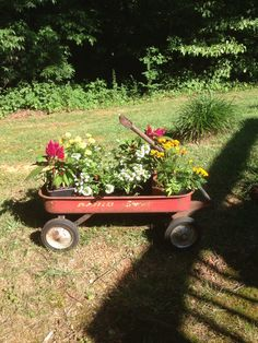 Mom bought this neat wagon and put some flowers in it.