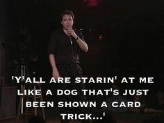 dog - card trick