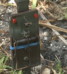 DIY Tripwire Bang Alarm...Low Tech, High Security Perimeter Alarm That's Very Cheap, And Easy To Make.  http://www.thegoodsurvivalist.com/diy-tripwire-bang-alarm-low-tech-high-security-perimeter-alarm-thats-very-cheap-and-easy-to-make/  #thegoodsurvivalist