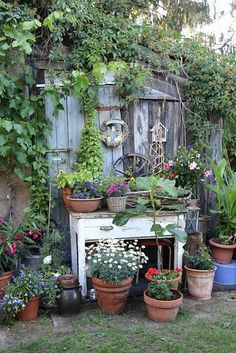 She Sheds, Potting Sheds, Gardens, Outdoor Structures, Garden Sheds, Plants, Greenhouses, Country, Google