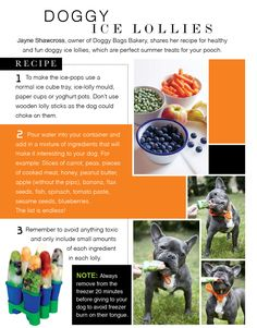 When it comes to ice cold treats this summer don't forget your pooch. Check out our pet recipe for Doggy Ice Lollies.