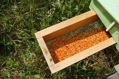 A pollen tray