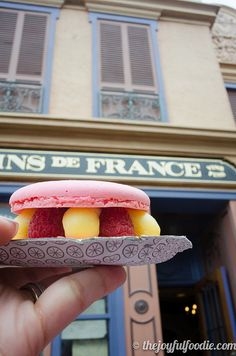 WAIT. They sold macaroons by the box at Epcot?! WHY did I not find out about this before last June?!