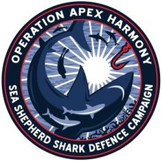 Pétitions - Sea Shepherd FranceNo to the granting of 8 million Euros from the European Union to the French State to kill sharks in the Reunion Island