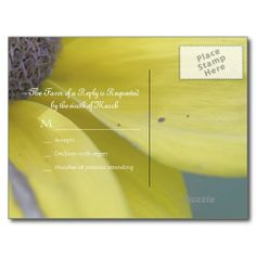 Yellow rudbeckia blossom post card