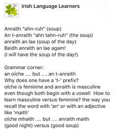 Irish Gaelic Language, Gaelic Irish, Gaelic Words, Scottish Gaelic, Images Of Ireland, Irish People, Language Lessons, Irish Dance, Idioms